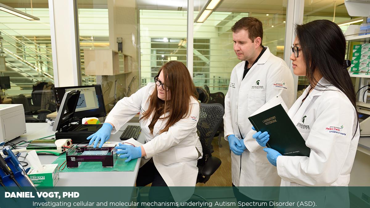 Daniel Vogt PHD, Investigating cellular and molecular mechanisms
